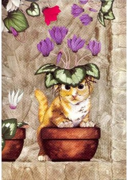 Chat dans le pot de cyclamens (45x65)*