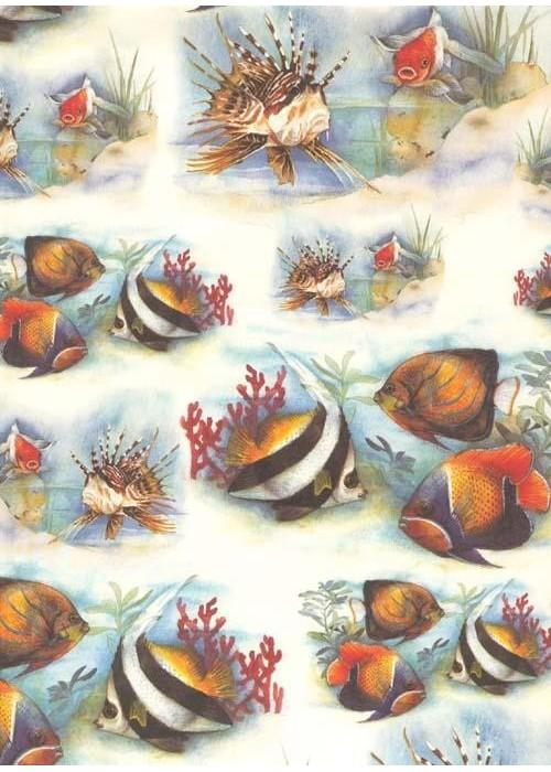 Les poissons exotiques 70x100 la th i re de bois - Acide oxalique bois exotique ...