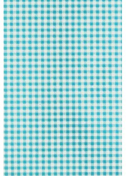 Baby doll vichy blanc turquoise (50x70)
