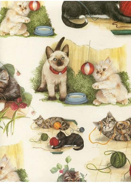 Chats et chatons (70x100)