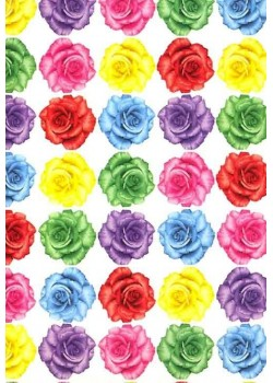 Style roses multicolores (70x100)