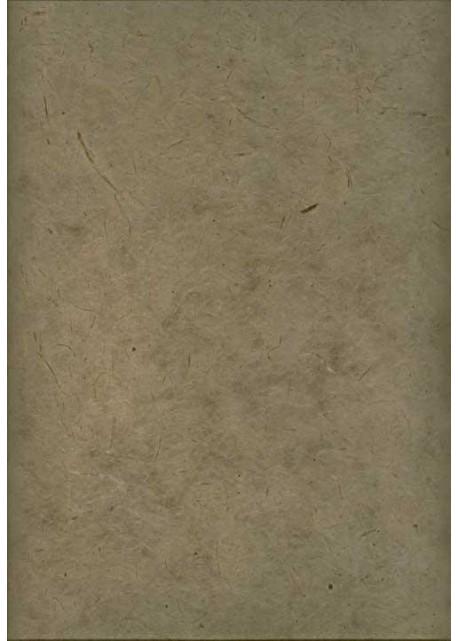 Papier lokta gris (50x75)