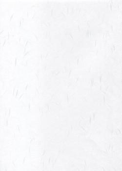 Véritable Tairei blanc flammé blanc (78x53)