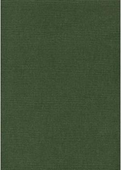"""Papier """"canevas vert foncé"""" (70x100)"""