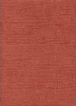 """Papier """"canevas rouge clair"""" (70x100)"""