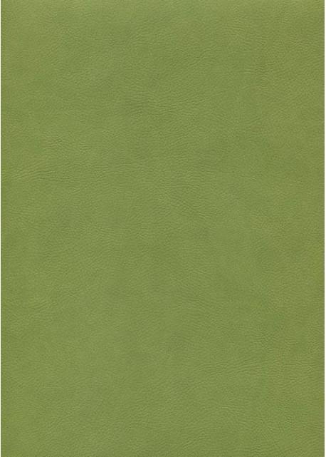 """Simili cuir """"Buffalo"""" vert printemps (70x100)"""
