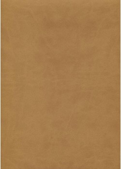 "Simili cuir ""Buffle lisse"" beige (70x100)"