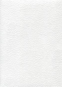 "Simili cuir Skivertex ""Chevreau"" blanc"