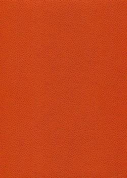 """Skivertex """"Gros Galuchat"""" orange"""