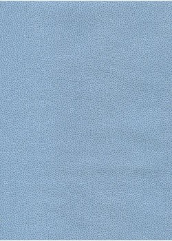"Skivertex ""Gros Galuchat"" bleu ciel"