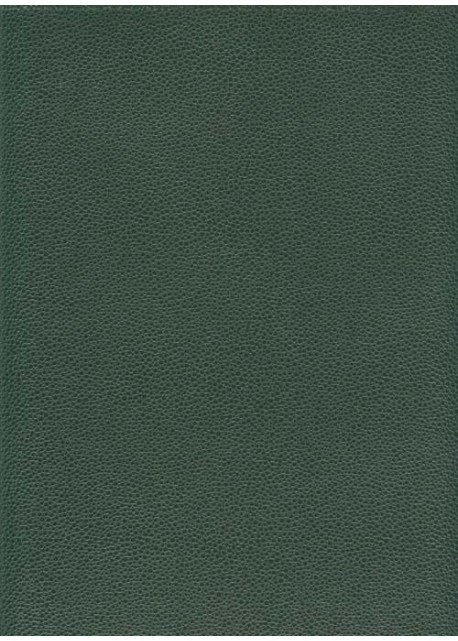 "Skivertex ""Gros Galuchat"" vert foncé"