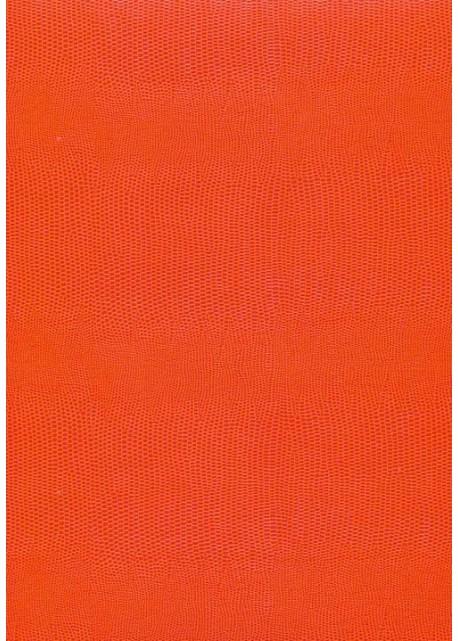 "Skivertex ""Lézard"" orange"