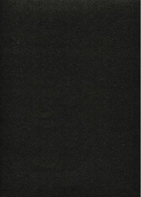 """Skivertex """"Mini Galuchat"""" noir"""