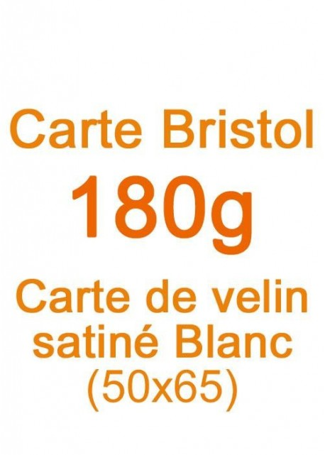 Carte Bristol (180g) 50x65cm