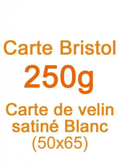 Carte Bristol (250g) 50x65cm