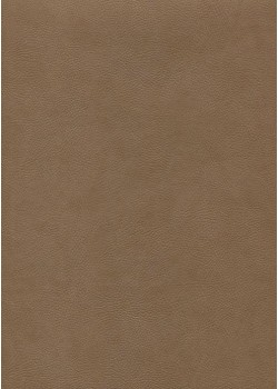 """Simili cuir """"Buffalo"""" taupe (70x100)"""