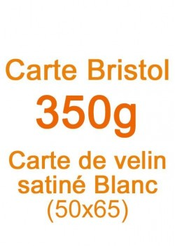 Carte Bristol (350g) 50x65