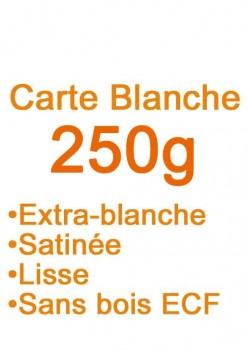 Carte blanche (250g) 72x102cm