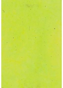 Papier lokta vert wasabi (50x75)