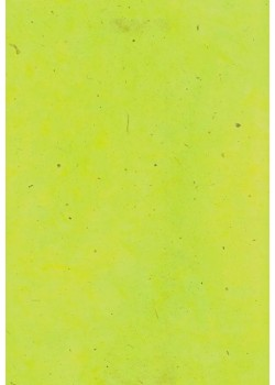 Lokta vert wasabi (50x75)