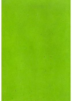 Papier lokta vert anis (50x75)