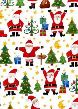 NOEL EN BLANC le père Noël (70x100)