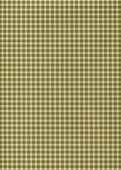 Vichy vert forêt (70x100)