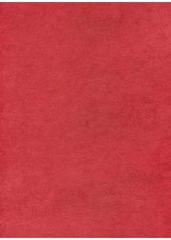 Papier lokta rouge tomate (50x75)