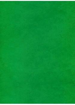 Lokta chlorophylle (50x75)
