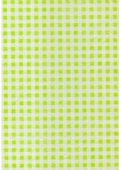 Voile intissé vichy vert pomme (70x100)