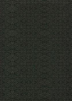 Miniature noir fond noir (50x70)