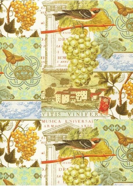 Cartes postales aux raisins et oiseaux réhaussées or (70x100)