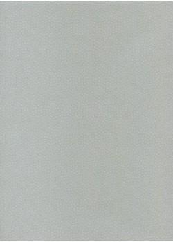 Véritable Edo Kosome bleu (53x78)