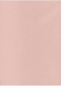 Véritable Edo Kosome rose (53x78)