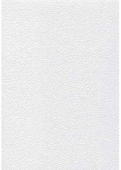 Papier imitation Chevreau blanc embossé (70x100)