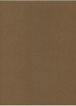 Mi-teintes n°501 Marron foncé (50x65)