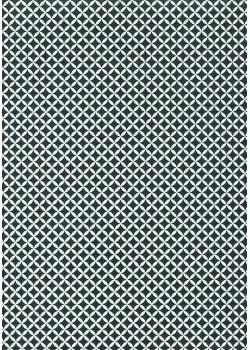 Perceval noir et blanc (50x70)