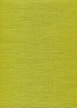 """Simili cuir """"Tussah"""" vert anis (70x100)"""