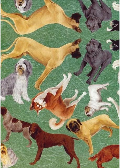 Les chiens (33x46)*