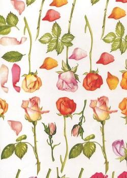 Les roses, feuilles et pétales (34x49)