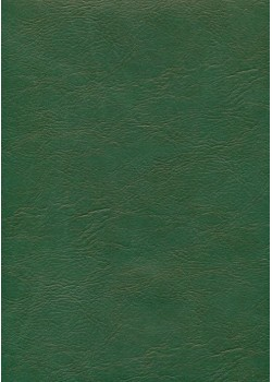 "Papier imitation cuir ""chevreau"" vert (50X65)*"
