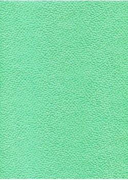 Lentilles relief menthe (56x76)