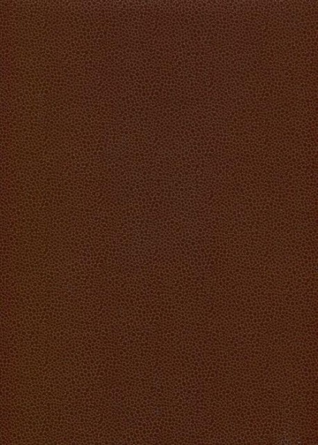 Papier imitation Galuchat moka (70x100)