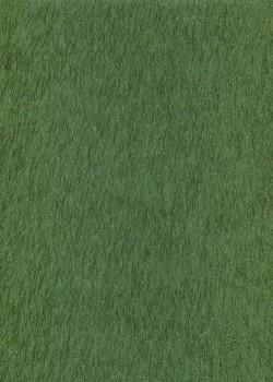 Saiko-shi fibre irisée ton sur ton vert (53x78)