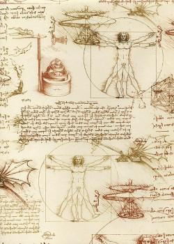 Léonard de Vinci- écritures et dessins (70x100)