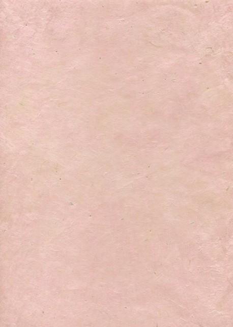 Lokta rose pastel (50x75)