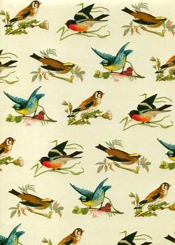 Ribambelle d'oiseaux (50x70)