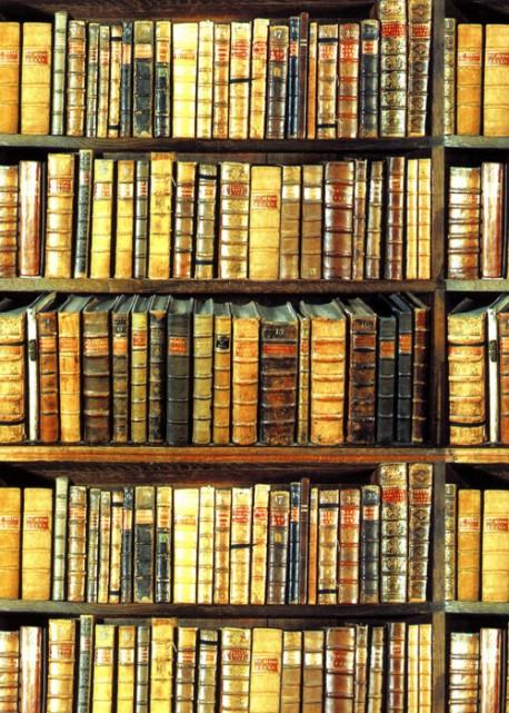 Les livres anciens (50x70)