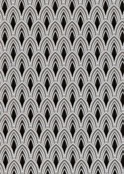 Les plumes de paon noires et blanches (50x70)