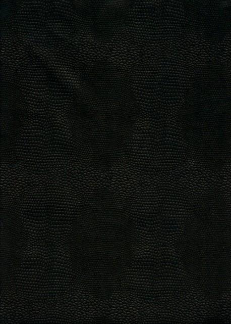 Papier imitation Lézard ton sur ton noir (70x100)
